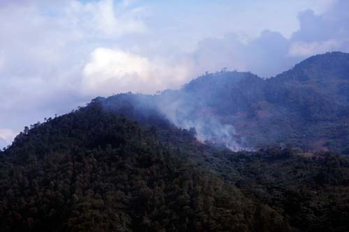 Incendios forestales Oaxaca.8