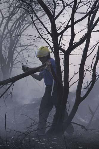 Incendios forestales Oaxaca.