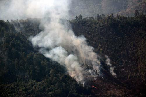 Incendios forestales Oaxaca.5
