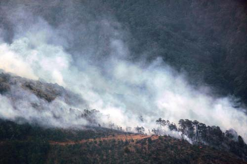 Incendios forestales Oaxaca.3